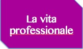 Kit vita professionale
