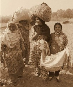 Women working in the cotton fields
